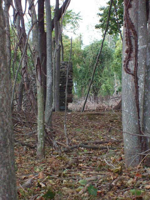 Charles Island Ruins - Milford, CT