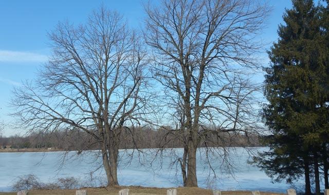 Frozen Reservoir