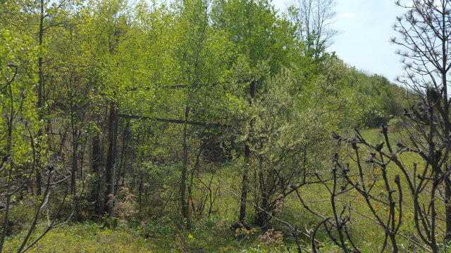 Centralia, PA - Rear of Baseball Diamond Backstop Off Park St