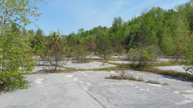 Centralia, PA - Basketball Courts Overgrown