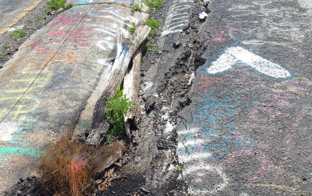 Centralia, PA - Abandoned Highway - Rt 61 - Crack - Burnt Logs