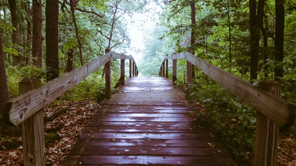Walking Bridge at Valley Forge National Park
