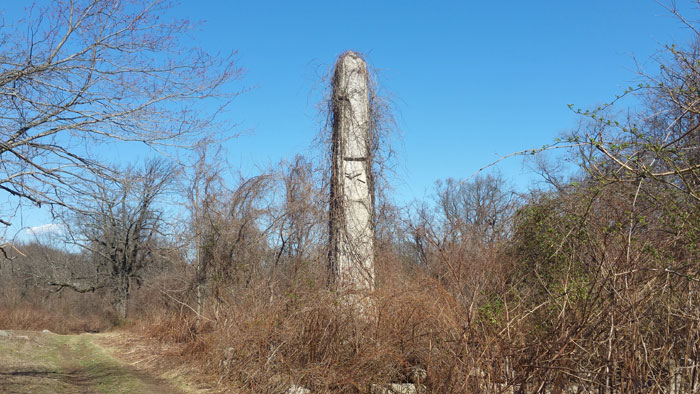 Mount Moriah cemetery vine-covered obelisk