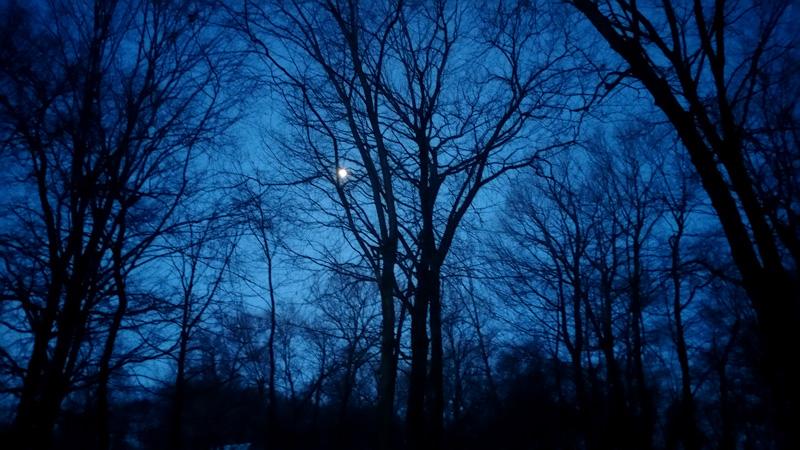 Early Dawn Blue Sky