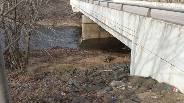 Schuylkill Bridge