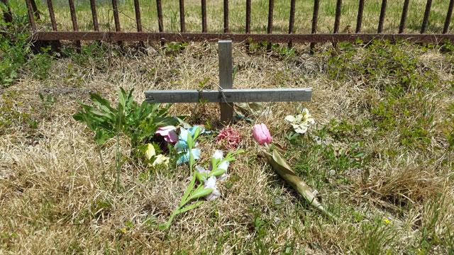 Centralia, PA - Pet's Grave Outside Odd Fellows Cemetery