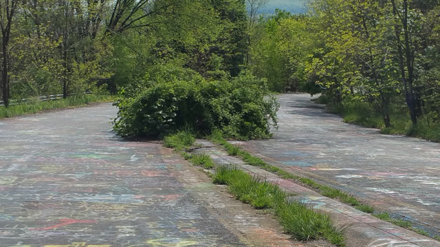 Centralia, PA - Abandoned Highway - Rt 61 - Bush