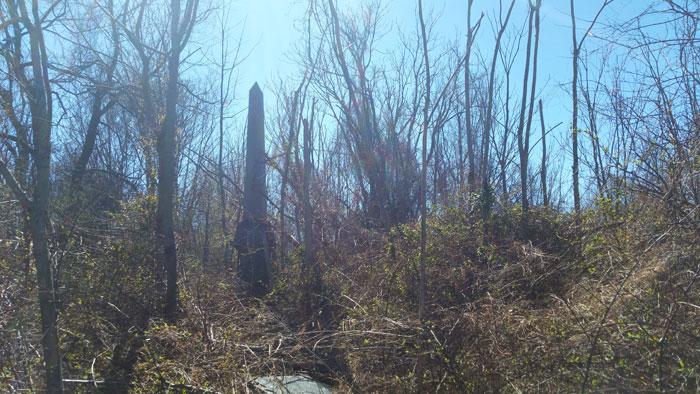 Mount Moriah cemetery obelisk in the trees